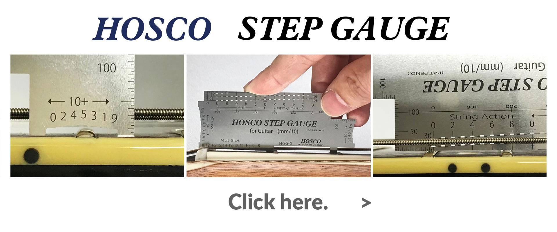 Step Gauge